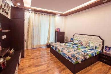 738 sqft, 1 bhk Apartment in Builder Project Upper Bharari Road, Shimla at Rs. 42.0000 Lacs
