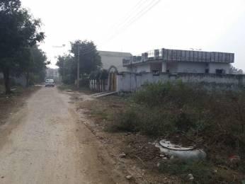 1800 sqft, Plot in Builder Sunny Prime Enclave Dakoha, Jalandhar at Rs. 22.5000 Lacs