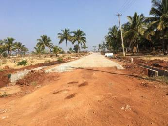 1200 sqft, Plot in Builder Amrita Coco Shelters Mysore Nanjangud Road, Mysore at Rs. 8.4000 Lacs