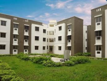 820 sqft, 2 bhk Apartment in TATA New Haven Boisar, Mumbai at Rs. 28.0000 Lacs