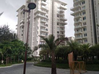 1765 sqft, 2 bhk Apartment in Builder Project Mahanagar, Lucknow at Rs. 34000