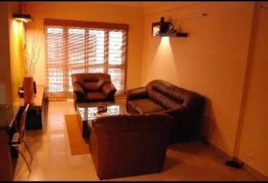 1270 sqft, 2 bhk Apartment in Builder Tulip Apartment Doddanekundi, Bangalore at Rs. 24000