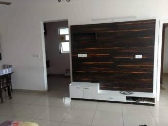 1080 sqft, 2 bhk Apartment in Mahendra Elena 5 Electronic City Phase 1, Bangalore at Rs. 21000