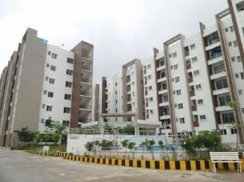 1088 sqft, 2 bhk Apartment in Mahaveer Rhyolite Hulimavu, Bangalore at Rs. 68.0000 Lacs