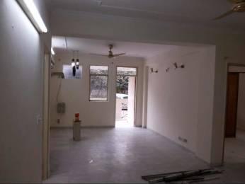 1550 sqft, 3 bhk BuilderFloor in DLF Exclusive Floors Sector 54, Gurgaon at Rs. 35000