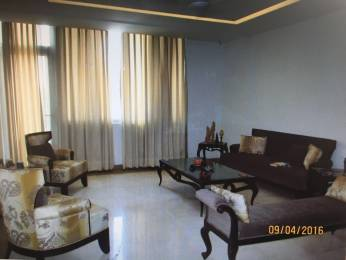 3000 sqft, 2 bhk BuilderFloor in Builder Project Sector 35, Chandigarh at Rs. 40000
