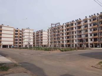 1075 sqft, 2 bhk Apartment in Builder Project Sector 63, Chandigarh at Rs. 22000
