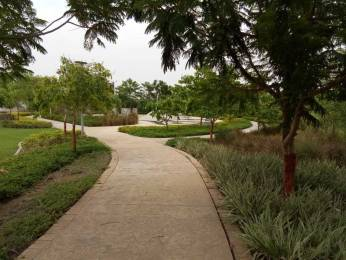 1200 sqft, Plot in Builder Willows Layout Pipla, Nagpur at Rs. 16.8000 Lacs