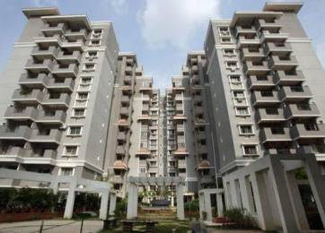 3753 sqft, 4 bhk Apartment in Sobha Ivory II Ulsoor, Bangalore at Rs. 1.1500 Lacs