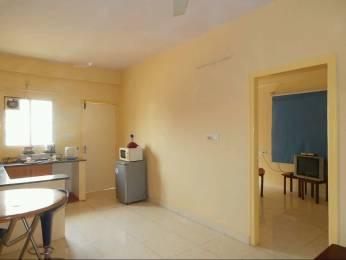 500 sqft, 1 bhk Apartment in Builder holiday apartment Bellandur, Bangalore at Rs. 13000