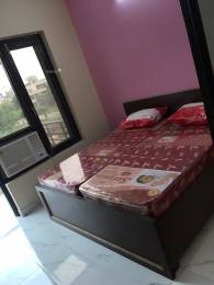 300 sqft, 1 bhk Apartment in Builder Project DLF City Phase 3 Road, Gurgaon at Rs. 9500