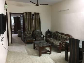1200 sqft, 2 bhk Apartment in Builder ajmal khan road Karol Bagh, Delhi at Rs. 30000