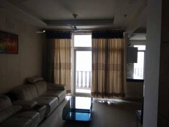 2875 sqft, 4 bhk Apartment in Jaipuria Sunrise Greens Apartment Ahinsa Khand 1, Ghaziabad at Rs. 33000