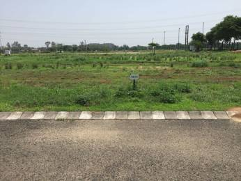 4500 sqft, Plot in Emaar MGF Developers Bungalows Sector 109 Mohali, Mohali at Rs. 72.0000 Lacs
