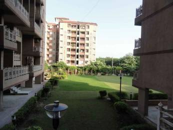 1100 sqft, 2 bhk Apartment in The Antriksh Apna Villa Sector 10 Dwarka, Delhi at Rs. 29500