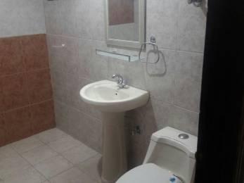1400 sqft, 1 bhk Apartment in DDA Shri Awas Apartments Sector 18B Dwarka, Delhi at Rs. 14000