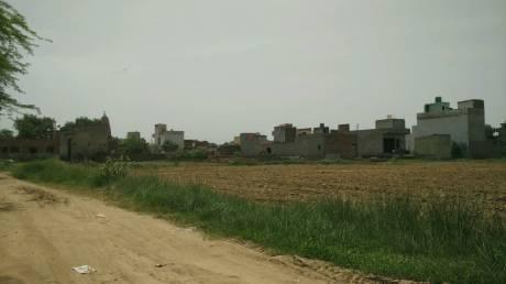 360 sqft, Plot in Builder Project Jaffarpur Kalan, Delhi at Rs. 4.8000 Lacs