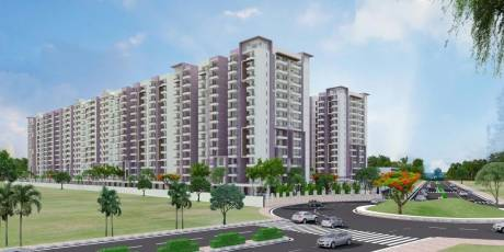 1725 sqft, 3 bhk Apartment in Builder Project Sikar Road, Jaipur at Rs. 46.5750 Lacs