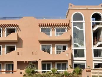 2475 sqft, 3 bhk BuilderFloor in BPTP Park 81 Sector 81, Faridabad at Rs. 15000