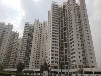 660 sqft, 1 bhk Apartment in Builder Project Pimple Gurav, Pune at Rs. 40.0000 Lacs