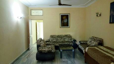 1300 sqft, 3 bhk BuilderFloor in Builder Project Malviya Nagar, Delhi at Rs. 34000