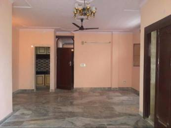 1125 sqft, 2 bhk Apartment in Builder Project Saket, Delhi at Rs. 32000