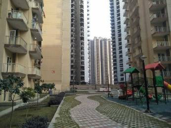 984 sqft, 2 bhk Apartment in Anthem French Apartments Sector 16B Noida Extension, Greater Noida at Rs. 34.4400 Lacs