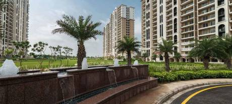 2364 sqft, 4 bhk Apartment in DLF New Town Heights 3 Sector-91 Gurgaon, Gurgaon at Rs. 25000