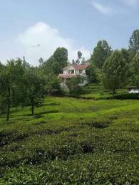 2420 sqft, Plot in Builder Project ketti pallada, Ooty at Rs. 90.0000 Lacs