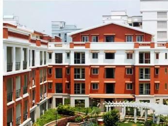 1250 sqft, 2 bhk Apartment in Anriya Dwellington RMV, Bangalore at Rs. 25000