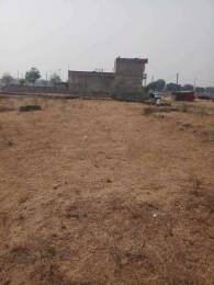 2043 sqft, Plot in Builder Project Diggi RoadMadhorajpura, Jaipur at Rs. 23.0000 Lacs