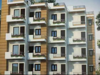 1250 sqft, 3 bhk BuilderFloor in Builder Project Sector 14, Gurgaon at Rs. 70.0000 Lacs