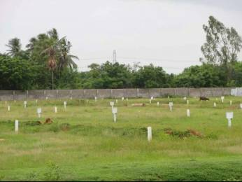1494 sqft, Plot in Aditya Capital Township Telaprolu, Vijayawada at Rs. 16.6000 Lacs