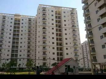 1221 sqft, 3 bhk Apartment in DLF Woodland Heights at My Town Jigani, Bangalore at Rs. 13000