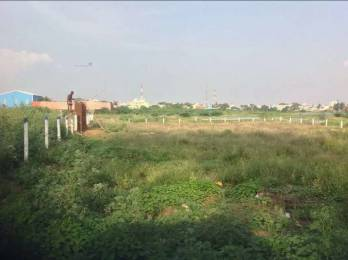 18972 sqft, Plot in Builder doctors enclave Tirunelveli Sankarankoil Road, Tirunelveli at Rs. 2.0000 Cr