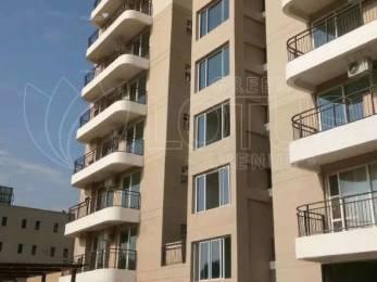 1385 sqft, 2 bhk Apartment in Maya Garden Avenue VIP Rd, Zirakpur at Rs. 55.0000 Lacs