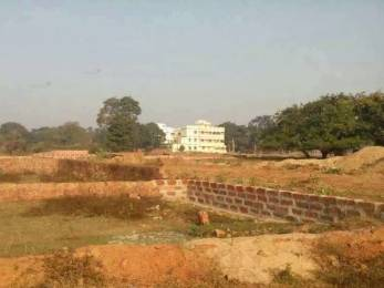 1200 sqft, Plot in Builder Project Cuttack Road, Cuttack at Rs. 12.0000 Lacs