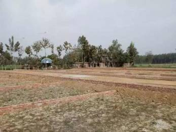 1150 sqft, Plot in Builder Project amar shaheed path lucknow, Lucknow at Rs. 14.3750 Lacs