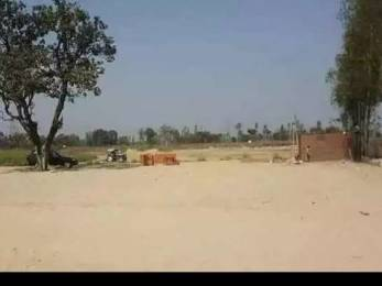 1000 sqft, Plot in Builder Project Faizabad Road, Lucknow at Rs. 3.0000 Lacs
