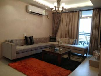 1849 sqft, 3 bhk Apartment in Builder Project Sector 117 Mohali, Mohali at Rs. 77.6580 Lacs