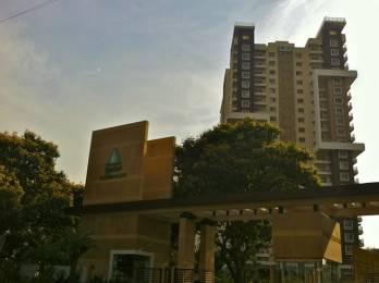 2800 sqft, 4 bhk Apartment in Salarpuria Sattva Greenage Bommanahalli, Bangalore at Rs. 85000