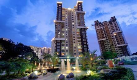 1590 sqft, 3 bhk Apartment in Salarpuria Sattva Greenage Phase II Bommanahalli, Bangalore at Rs. 1.4000 Cr