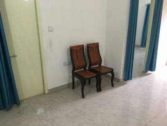 600 sqft, 1 bhk Apartment in Builder Project rohit nagar, Bhopal at Rs. 7000