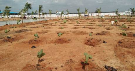 5400 sqft, Plot in Builder Sri Village 2 Airport Road, Hyderabad at Rs. 36.0000 Lacs