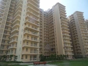 1250 sqft, 2 bhk Apartment in GPL Eden Heights Sector 70, Gurgaon at Rs. 95.0000 Lacs