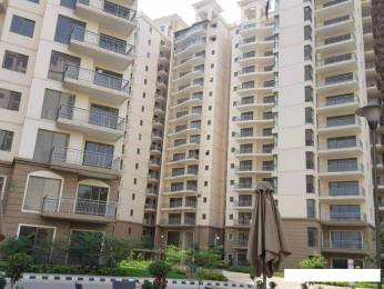1812 sqft, 3 bhk Apartment in Godrej Frontier Sector 80, Gurgaon at Rs. 1.0000 Cr