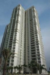 4761 sqft, 4 bhk BuilderFloor in Lodha Bellezza Sky Villas Hitech City, Hyderabad at Rs. 2.9000 Cr