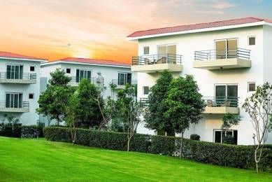 1742 sqft, 3 bhk Villa in Paramount Golfforeste Villas Zeta, Greater Noida at Rs. 81.0030 Lacs