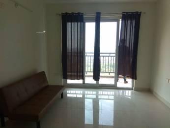 1650 sqft, 3 bhk Apartment in Ashoka Liviano Narsingi, Hyderabad at Rs. 35000