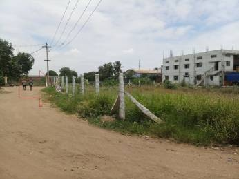 17440 sqft, Plot in Builder Project Thaneerpandal Road, Coimbatore at Rs. 5.2000 Cr